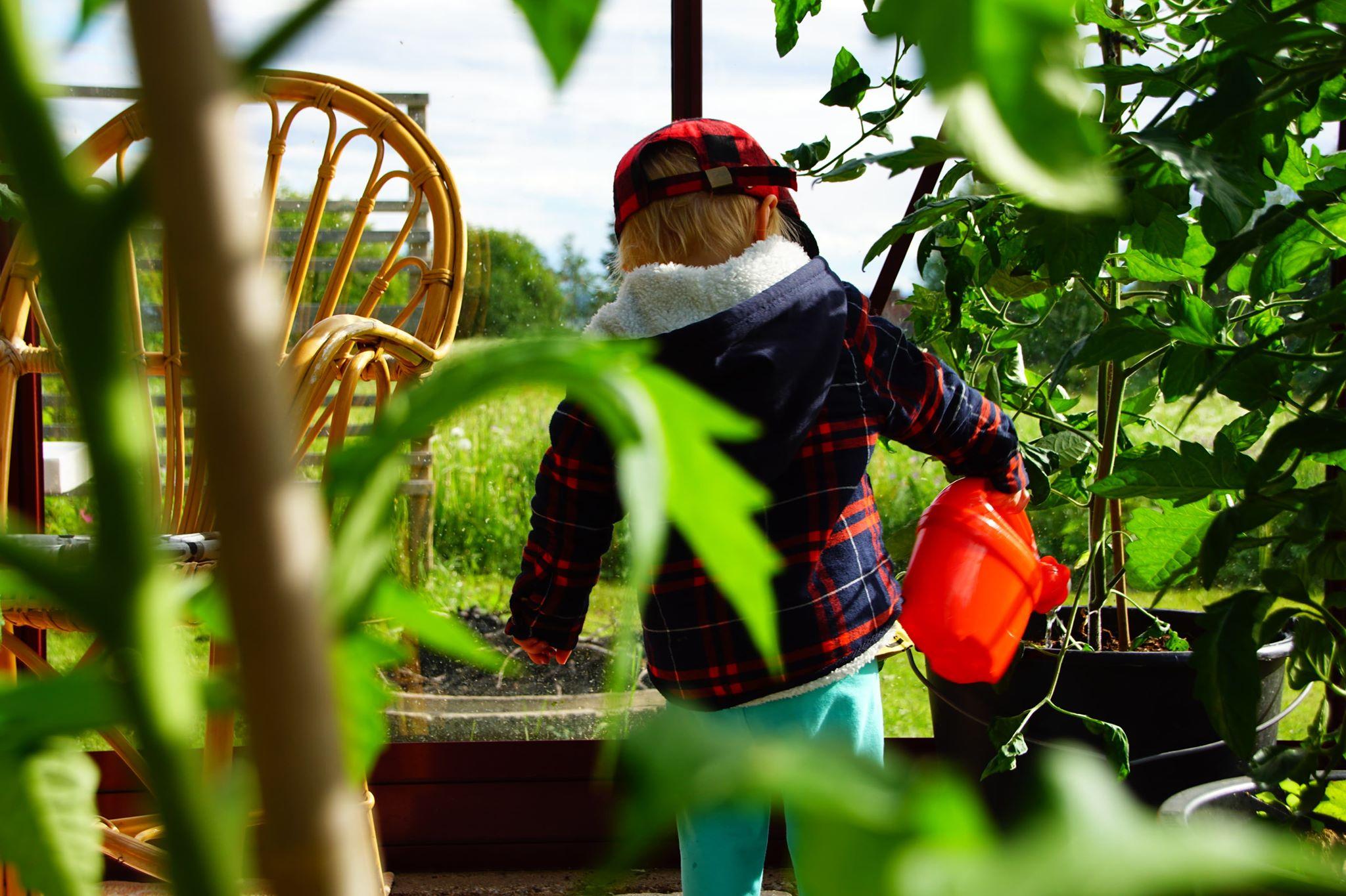 Barn i växthus